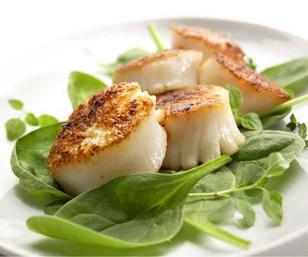 food photography for food blogg photographers
